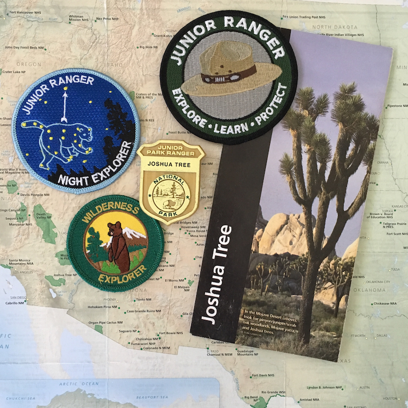 Junior Ranger Pins