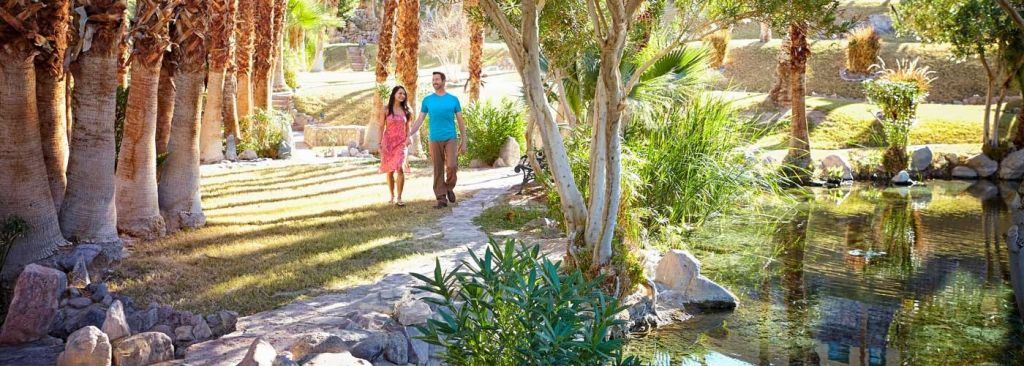 Couple walking through palm trees