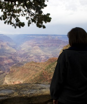 person looking into grand canyon