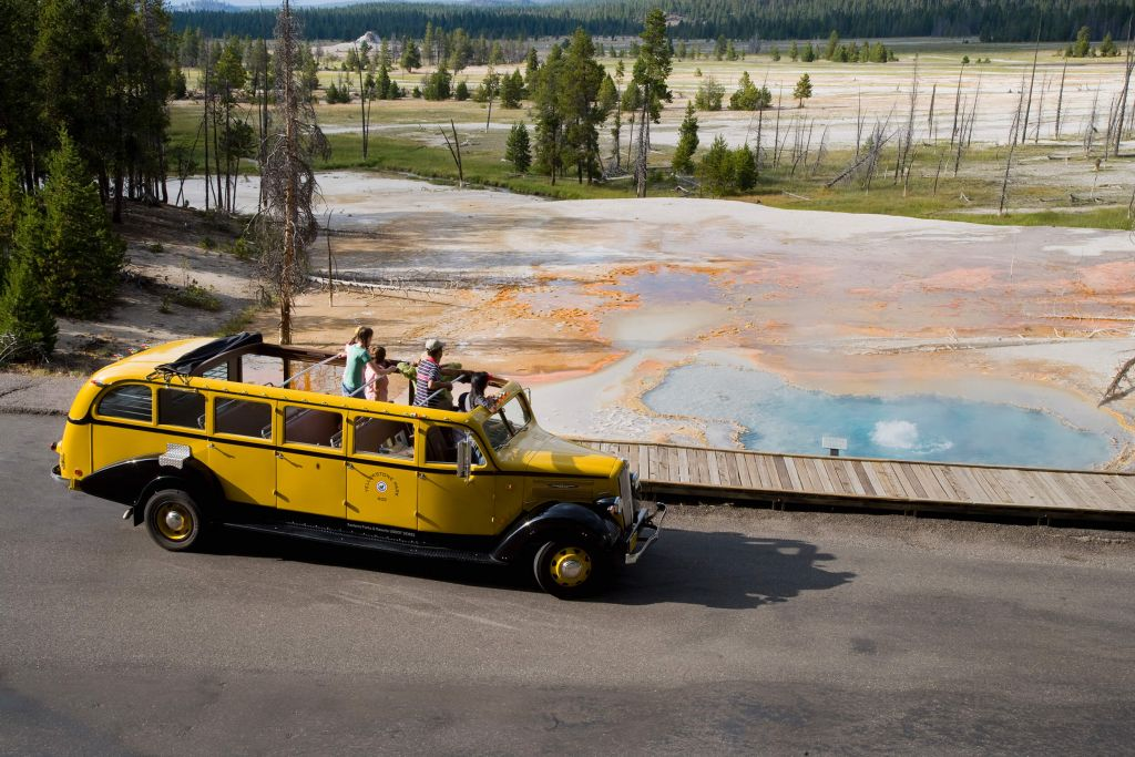 Yellow Bus Firehole